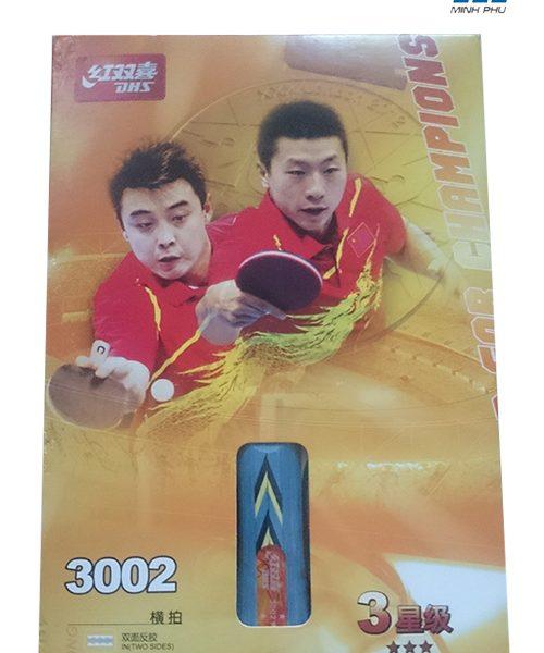 2116324vot-bong-ban-3002