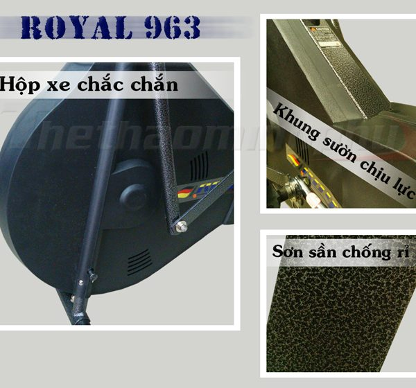 3202232xe-dap-tap-the-duc-royal-963-dac-diem-5