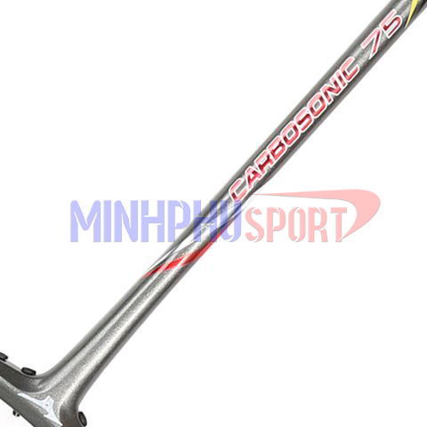 vot-cau-long-mizuno-carbosonic-75-than2