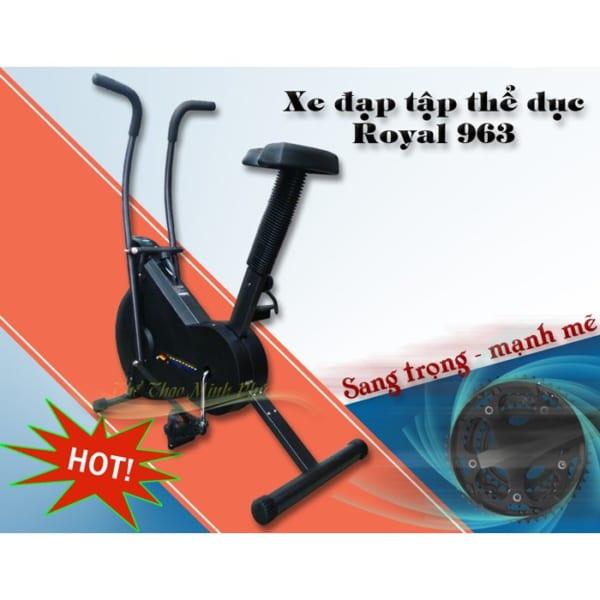 xe-dap-tap-the-duc-royal-963