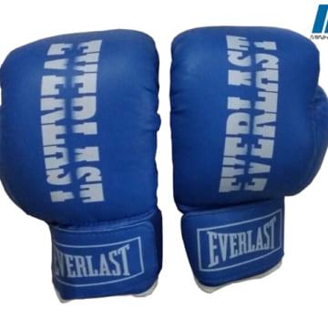 Găng đấm Boxing Everlast L2 xanh