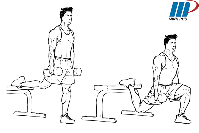 cách tập Split squat