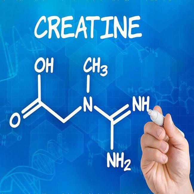 Creatine là gì