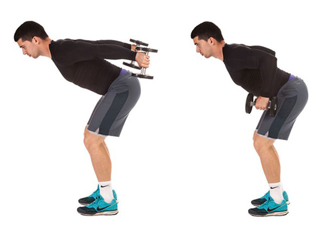 Bài tập Standing Bent-Over Two-Arm Dumbbell